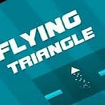 Flying Triangle 2021