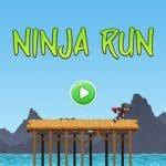 Ninja Run Adventure
