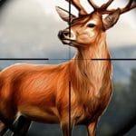Safari Animal Hunter